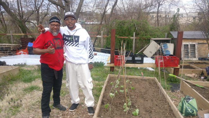'Hustlaz 2 Harvesters': Giving Back Through Agro-Entrepreneurship